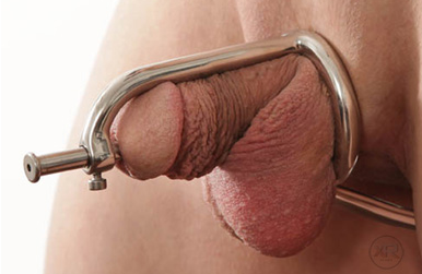 Cock ring anal hook